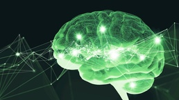 Reduce human error with our brain-centric tools based on neuroscience research