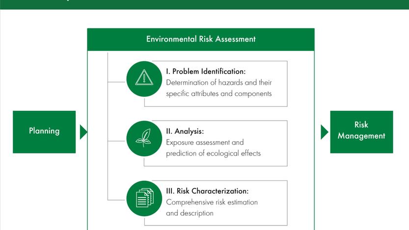 Environmental risk assessment steps