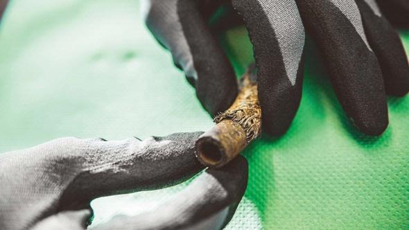Flexible tube damage DEKRA