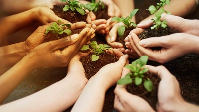 Hands holding growing plants