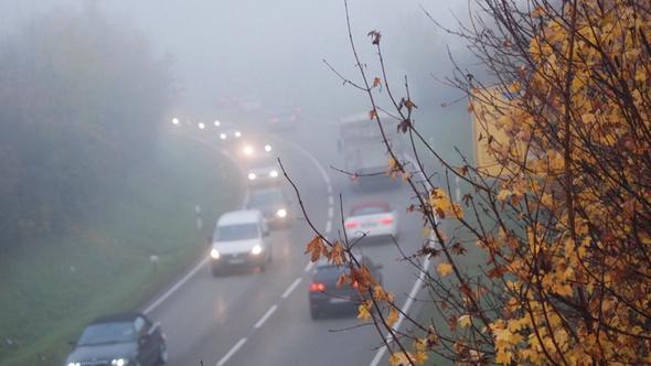 Auto fit für Herbst und Winter
